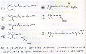 ビタミンAの定義